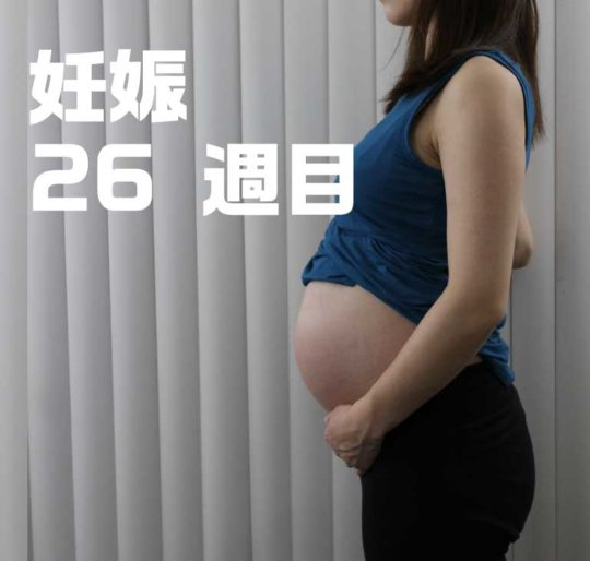 妊娠7ヶ月、26週目のお腹の写真