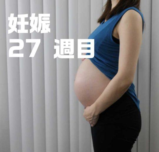 妊娠7ヶ月、27週目のお腹の写真