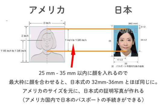 アメリカと日本の証明写真のサイズの違い