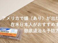 アメリカで蟻(あり)が出た!在米日本人がおすすめする徹底退治&予防方法